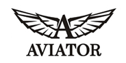 Watches Aviator